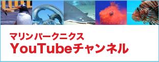 マリンパークニクスYouTubeチャンネル