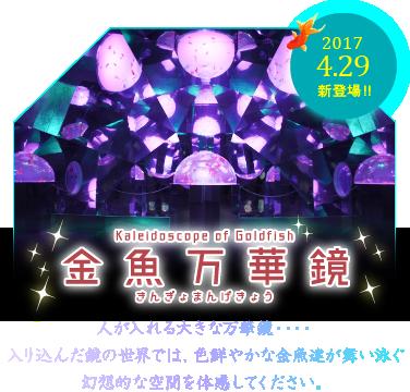 sp-cas-kaleidoscope-1